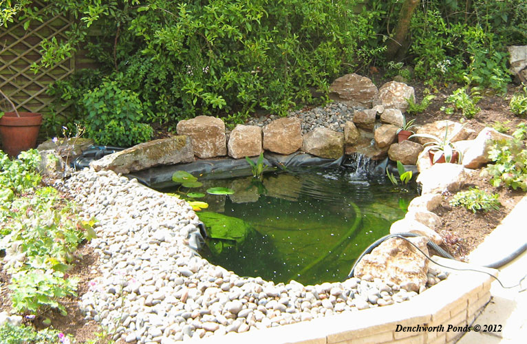 Denchworth ponds and gardens for Large outdoor fish ponds