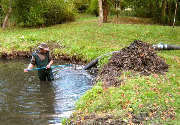 Denchworth ponds and gardens for Garden pond cleaning