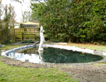 build pond oxfordshire 5