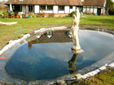 build pond oxfordshire 9
