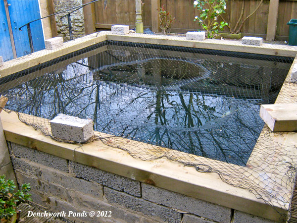 Pond construction ponds built oxfordshire for Koi pond builders uk