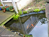 build garden pond oxfordshire 1