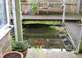 build garden ponds oxford 2