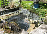 pond cleaning oxfordshire 4