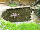pond cleaning oxfordshire 14