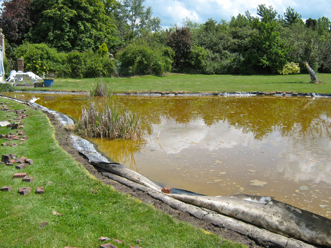 Garden pond cleaning for Large pond maintenance