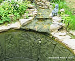 pond repair oxfordshire 37