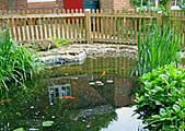 repair pond in oxford