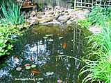 pond repairs in oxford